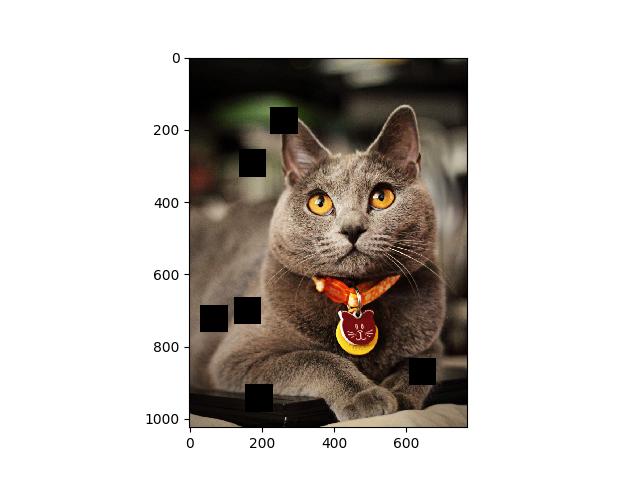 31  텐서플로우(TensorFlow)를 이용한 데이터 증대(Data